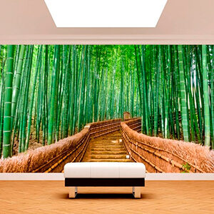 Bambu escaleras