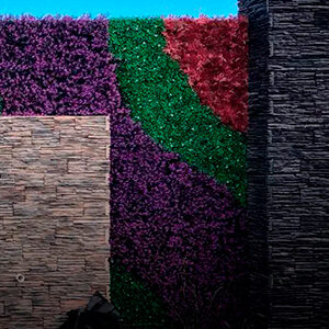 Muros verde terza